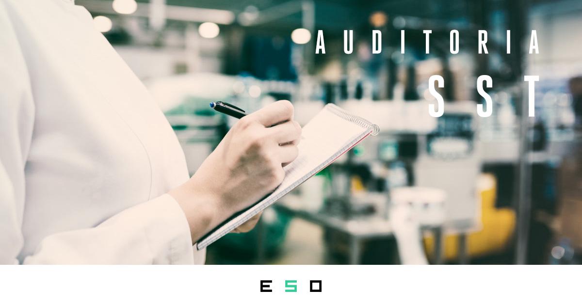 Tudo o Que Você Precisa Saber a Respeito de Auditorias de SST em Empresas